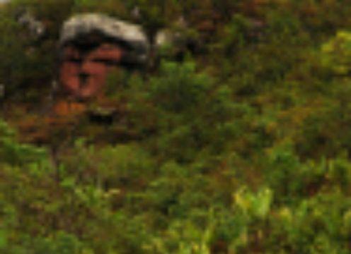 Rosto na Serra do Tepequem (1)