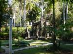 Caramancão do Brasil Colônia do jardim do Solar das Andorinhas - SP - Brasil
