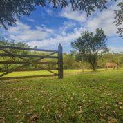 Área rural de Tiradentes, Minas Gerais, Brasil. Foto: Thais Ghussn