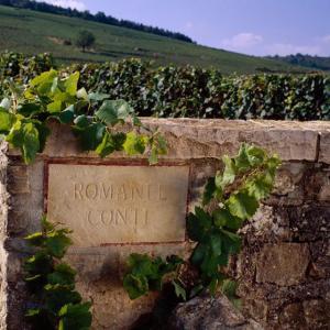 Beaune, Borgonha, Entrada da célebre Vinícola Romanée Conti