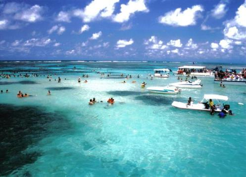 Galés, região de corais na Praia de Maragoji, Alagoas