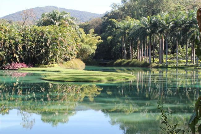O Parque de Inhotim concilia obras de arte contemporânea a um jardim tropical com espécies raras.