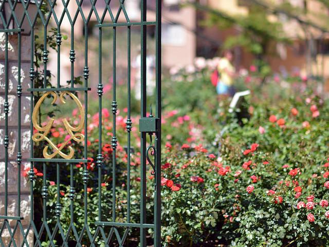 Jardim da Princesa