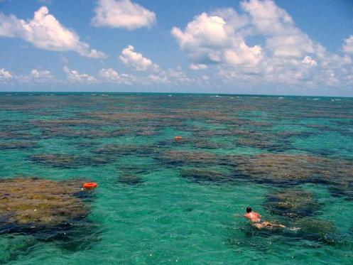 Piscinas naturais com águas mansas e cristalinas estão na orla de Vitória.