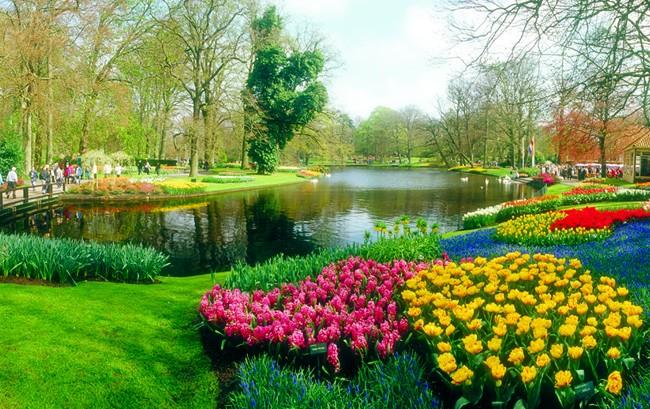 Keukenhof Gardens, na Holanda, visitado pela AmaWaterways