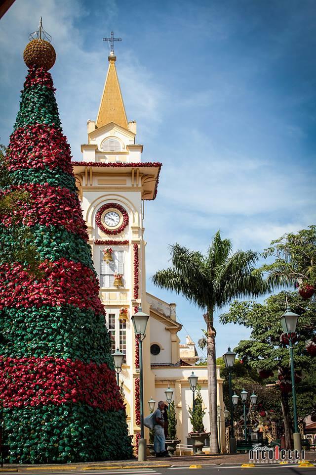 Árvore de Natal de Socorro (SP)
