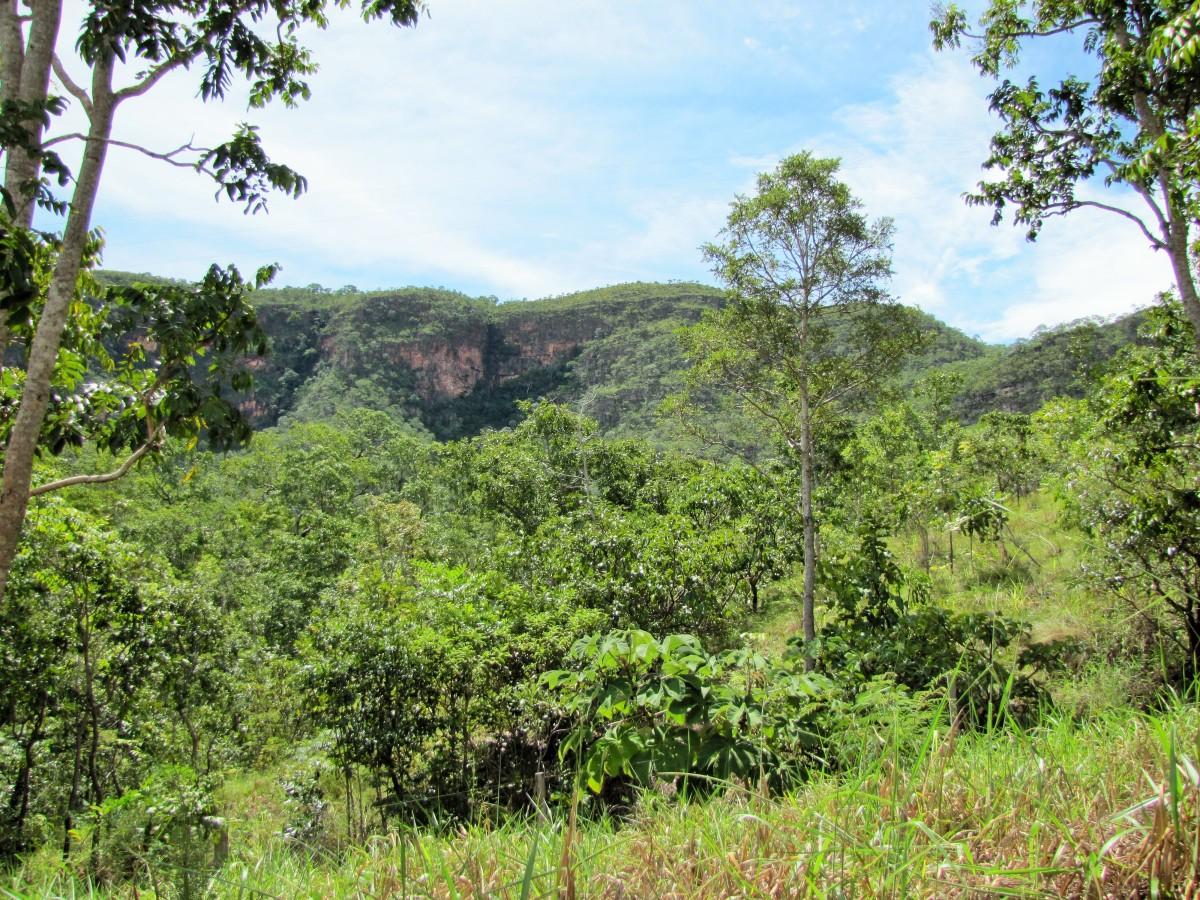 Parque Estadual Serra Azul (MT) - Foto Commons