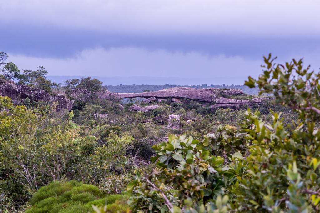 Ponte de Pedra - Foto por Gcom - MT - Rafaella Zanol