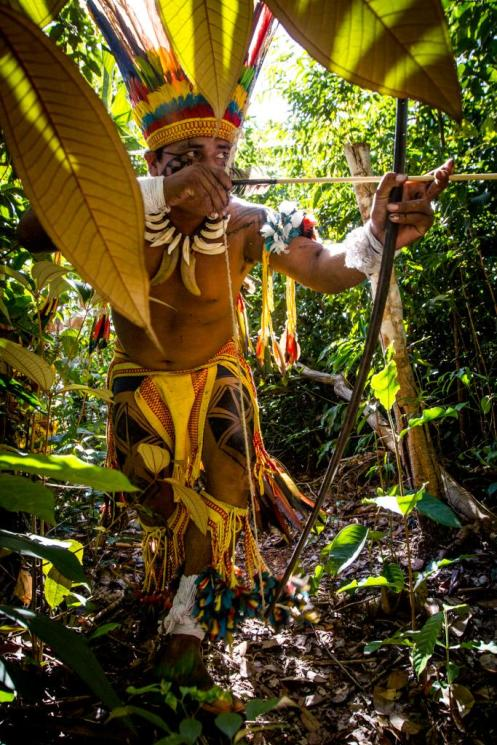 Índio em mata no interior de Aldeia Wasare