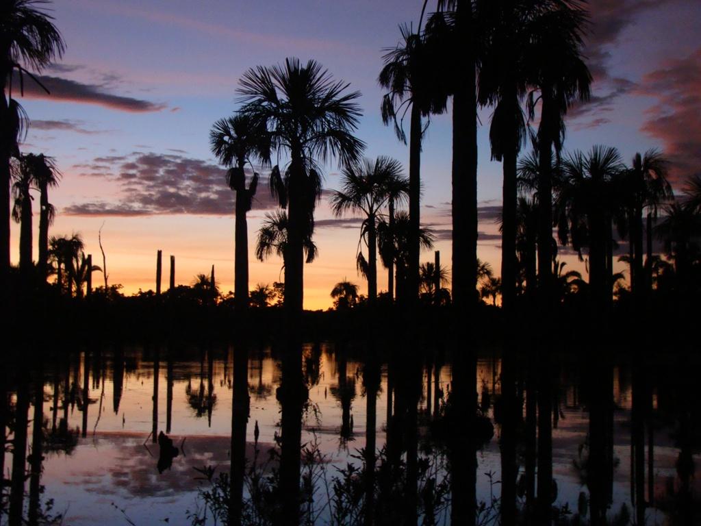 Lagoa das Araras, Bom Jardim, Nobres (MT) - Foto Site derepente1000coisas