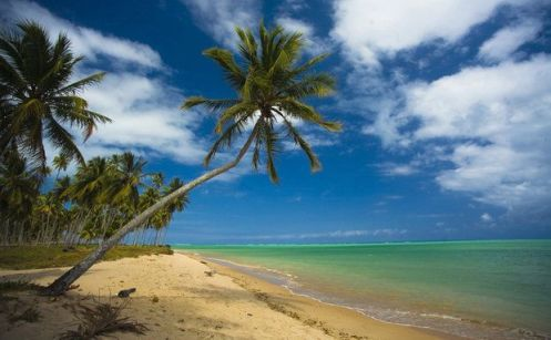 Praia de Alagoas - Foto Executive.tur.br