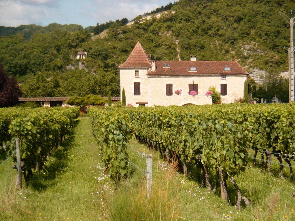 vinhos-producao-em-portugal