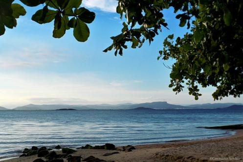 Praia Ribeirão da Ilha - Florianópolis - Santa Catarina - Foto Wikimedia.jpg