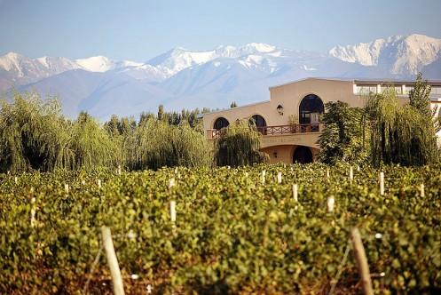 Cantina e vinicola Francois Lurton (Argentina) - Foto Wikimedia.jpg