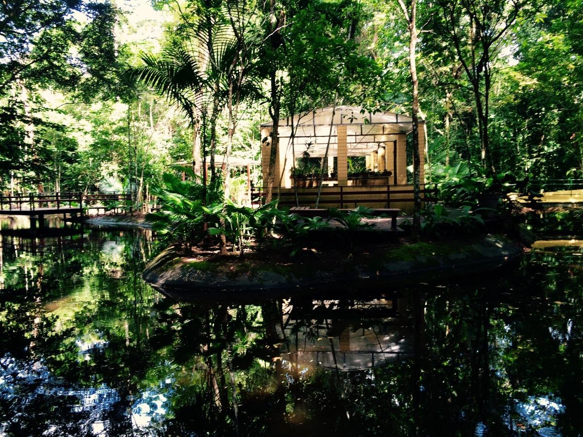 Jardim Botânico de Recife(PE)  - Foto Wikimedia.jpg