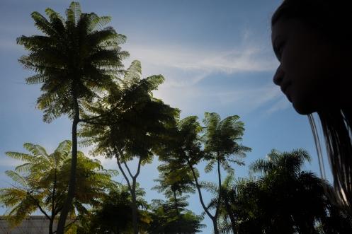 Rio - Coqueiros.jpg
