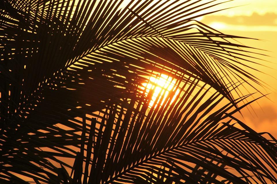 Sky Paradise Sun Of Jamaica Sun Caribbean Sunset