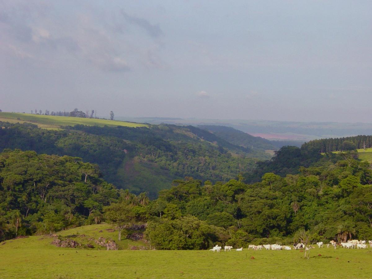 Itaqueri da Serra - Foto Wikimedia.jpg