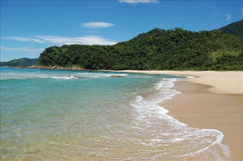 Praia Brava - Trindade - Paraty - Foto Ricardo Gaspar.JPG