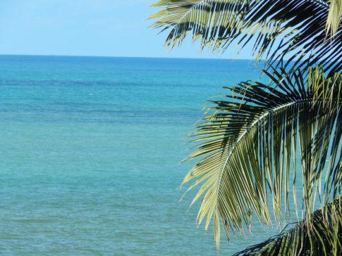 Bahia - Costa dos Coqueiros
