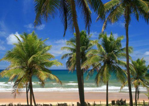 Imbassaí - Bahia - Foto - Panoramio.jpg