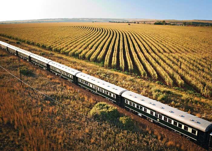 Rovos Rail - Trem - África do Sul - Divulgação