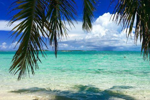 Bahamas - Abre - Foto Buck Eye Beth - Segue Viagem