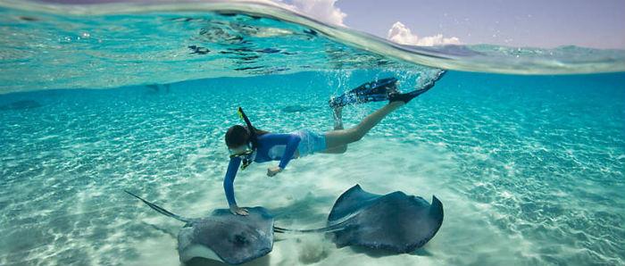 Bahamas - Nadando com raias - Foto Bluegreen Vacations