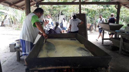 Produção artesanal de mandioca na Casa da Farinha