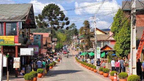 Avenida principal de Monte Verde Foto Naturam