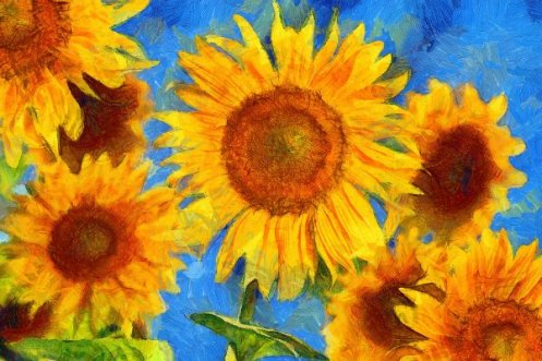 Sunflowers Os Girassóis de Van Gogh Foto The Art Box Academy