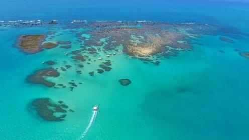Barreira de Corais de Maragogi - Divulgação